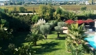Vue du gîte les Coquilloux sur la piscine le jardin le vignoble et le Pic St Loup